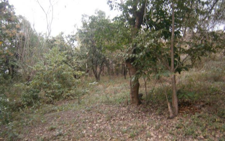Foto de terreno habitacional en venta en domicilio conocido, 3 de mayo, xochitepec, morelos, 1020777 no 09