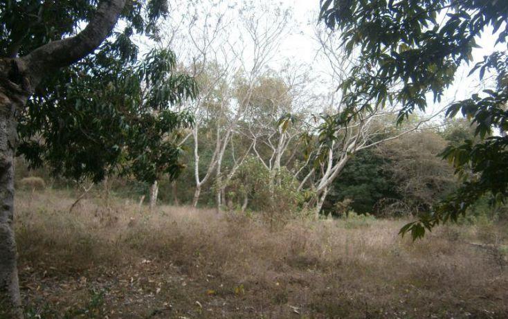 Foto de terreno habitacional en venta en domicilio conocido, 3 de mayo, xochitepec, morelos, 1020777 no 10