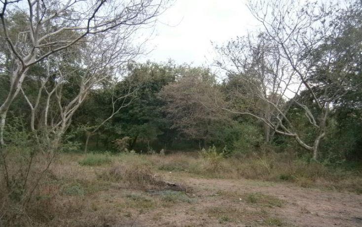 Foto de terreno habitacional en venta en domicilio conocido, 3 de mayo, xochitepec, morelos, 1020777 no 11