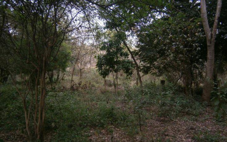 Foto de terreno habitacional en venta en domicilio conocido, 3 de mayo, xochitepec, morelos, 1020777 no 13