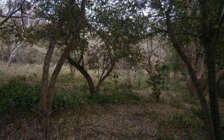 Foto de terreno habitacional en venta en domicilio conocido, 3 de mayo, xochitepec, morelos, 1020777 no 14