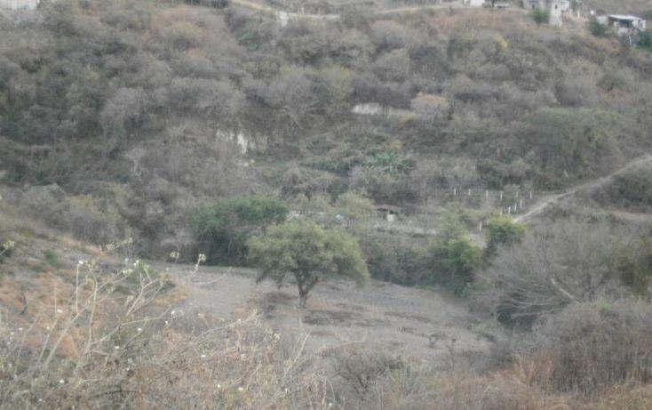 Foto de terreno habitacional en venta en domicilio conocido, 3 de mayo, xochitepec, morelos, 1020777 no 19