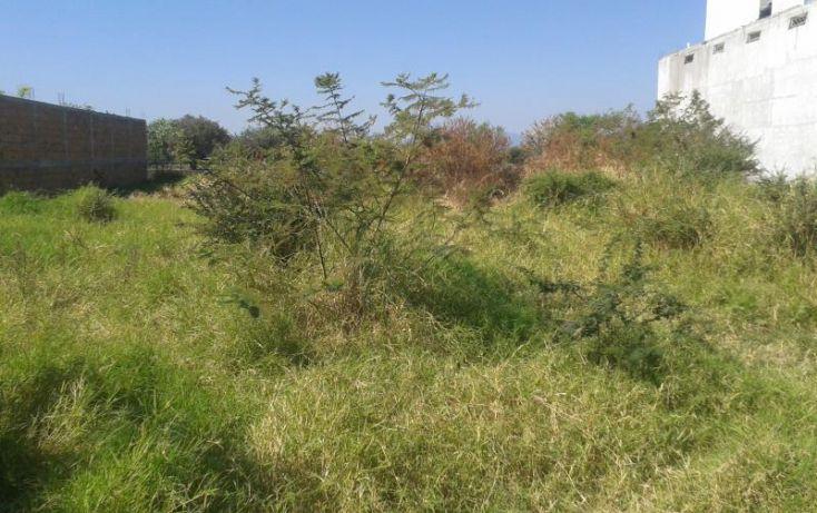 Foto de terreno habitacional en venta en domicilio conocido, alpuyeca, xochitepec, morelos, 1526954 no 03