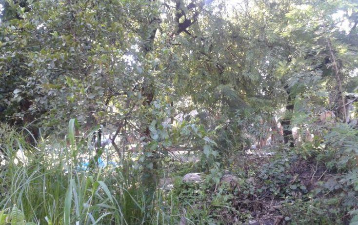 Foto de terreno habitacional en venta en domicilio conocido, emiliano zapata, jojutla, morelos, 1016349 no 03