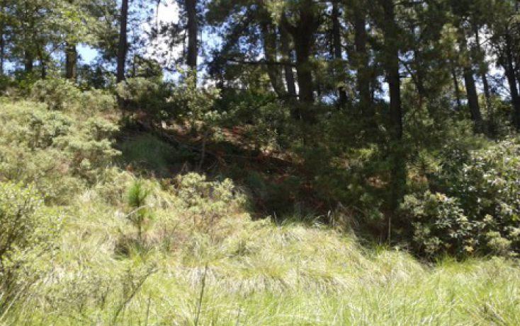 Foto de terreno habitacional en venta en domicilio conocido la manzana de san carlos sn, villa del carbón, villa del carbón, estado de méxico, 1719816 no 07
