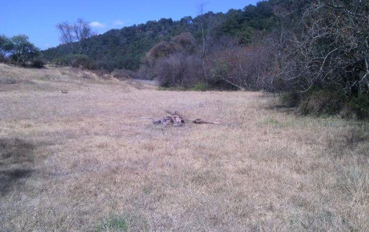 Foto de terreno habitacional en venta en domicilio conocido, las ánimas, chapa de mota, estado de méxico, 854143 no 04