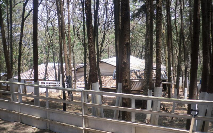 Foto de rancho en venta en domicilio conocido nonumber, villa del carb?n, villa del carb?n, m?xico, 1936234 No. 14