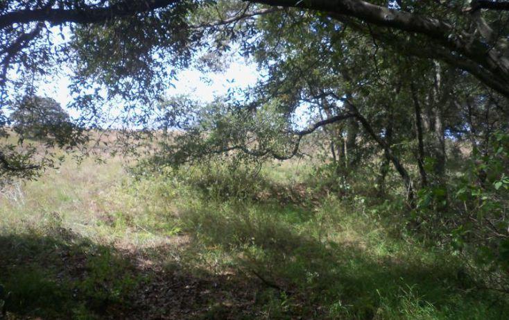 Foto de terreno comercial en venta en domicilio conocido, san francisco magu, nicolás romero, estado de méxico, 1614744 no 06