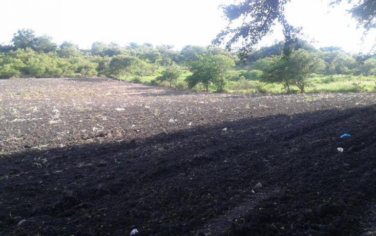 Foto de terreno habitacional en venta en domicilio conocido, tequesquitengo, jojutla, morelos, 1016363 no 02