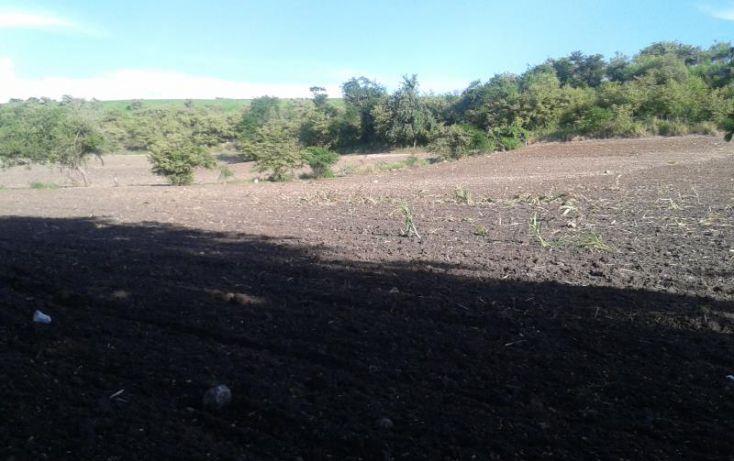 Foto de terreno habitacional en venta en domicilio conocido, tequesquitengo, jojutla, morelos, 1016363 no 04