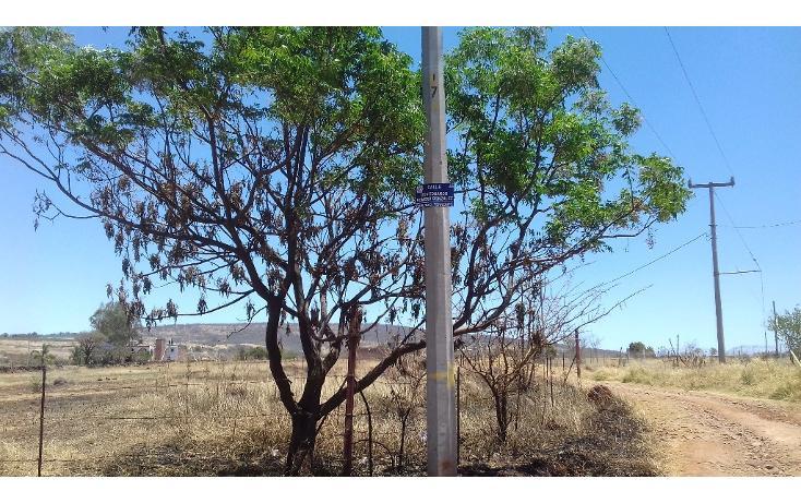 Foto de terreno habitacional en venta en  , tepatitlán de morelos centro, tepatitlán de morelos, jalisco, 1828663 No. 01