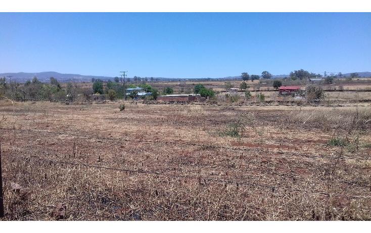 Foto de terreno habitacional en venta en  , tepatitlán de morelos centro, tepatitlán de morelos, jalisco, 1828663 No. 02
