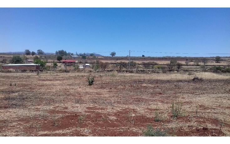 Foto de terreno habitacional en venta en  , tepatitlán de morelos centro, tepatitlán de morelos, jalisco, 1828663 No. 05