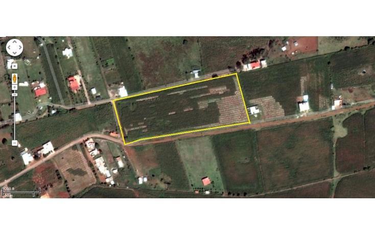 Foto de terreno habitacional en venta en  , tepatitlán de morelos centro, tepatitlán de morelos, jalisco, 1828663 No. 08