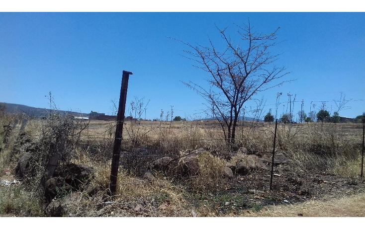 Foto de terreno habitacional en venta en  , tepatitlán de morelos centro, tepatitlán de morelos, jalisco, 1828663 No. 15