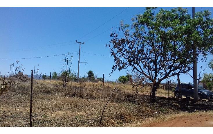 Foto de terreno habitacional en venta en  , tepatitlán de morelos centro, tepatitlán de morelos, jalisco, 1828663 No. 17