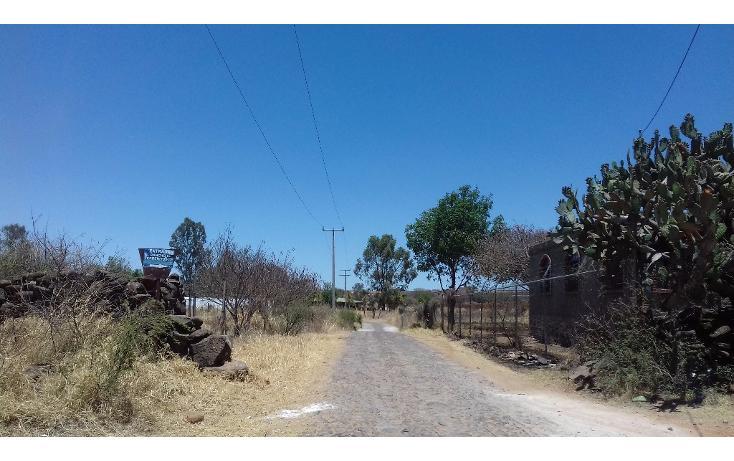Foto de terreno habitacional en venta en  , tepatitlán de morelos centro, tepatitlán de morelos, jalisco, 1828663 No. 18