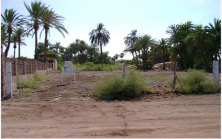 Foto de terreno habitacional en venta en don jose perpuli, zaragoza, loreto, baja california sur, 1341355 no 05
