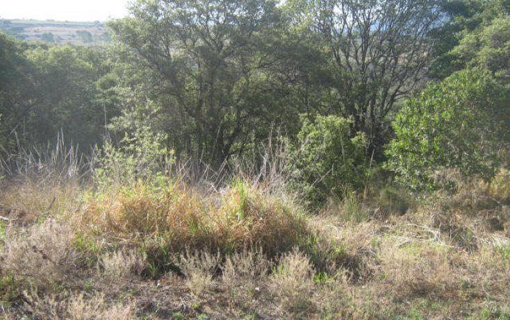 Foto de terreno habitacional en venta en don manuel, club virreyes, tepotzotlán, estado de méxico, 287116 no 03