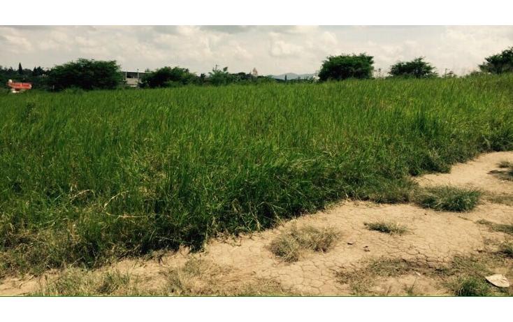 Foto de terreno habitacional en venta en  , dos ríos, emiliano zapata, veracruz de ignacio de la llave, 1759080 No. 02