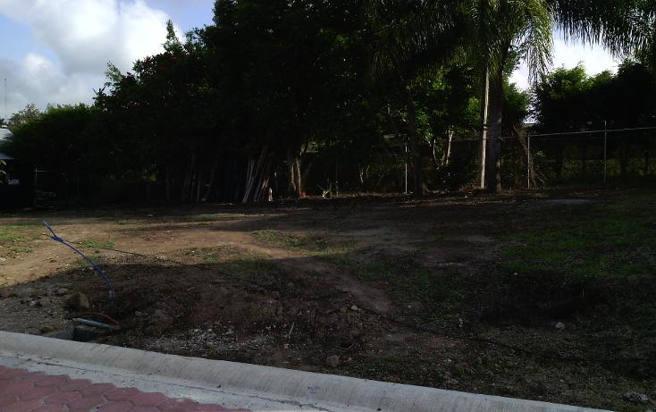Foto de terreno habitacional en venta en  , dos r?os, emiliano zapata, veracruz de ignacio de la llave, 1932414 No. 03