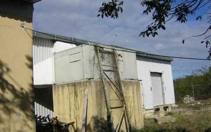 Foto de nave industrial en venta en  , dzemul, dzemul, yucatán, 1066751 No. 03