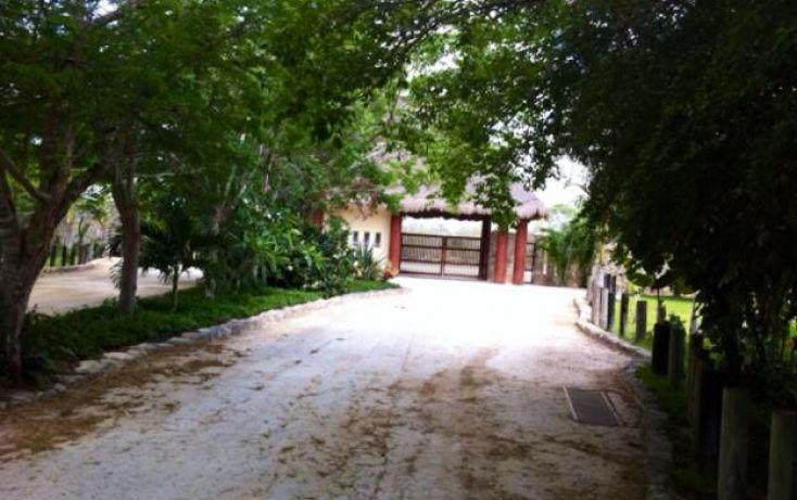 Foto de terreno habitacional en venta en, dzibilchaltún, mérida, yucatán, 1558632 no 06