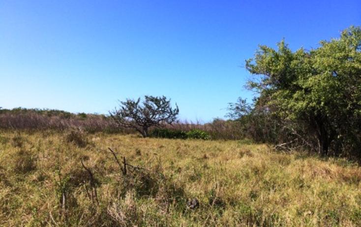 Foto de rancho en venta en  , dzilam de bravo, dzilam de bravo, yucatán, 1119895 No. 08