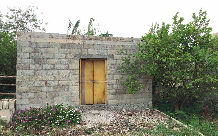 Foto de rancho en venta en  , dzilam de bravo, dzilam de bravo, yucatán, 1119895 No. 17