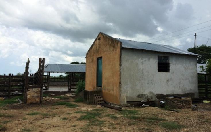 Foto de rancho en venta en  , dzilam de bravo, dzilam de bravo, yucatán, 1132185 No. 23