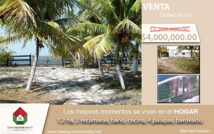 Foto de terreno habitacional en venta en  , dzilam de bravo, dzilam de bravo, yucatán, 1773640 No. 01