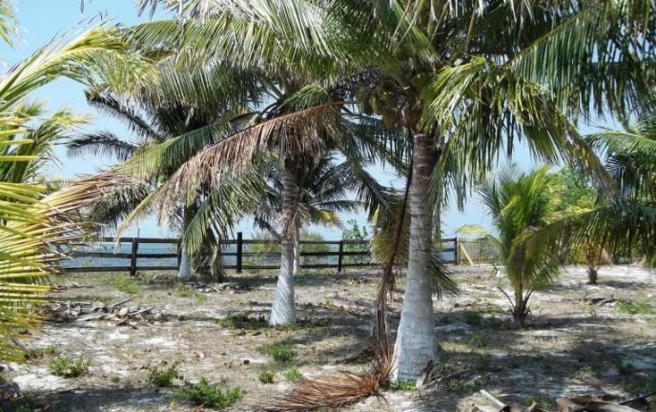 Foto de terreno habitacional en venta en  , dzilam de bravo, dzilam de bravo, yucatán, 1773640 No. 03
