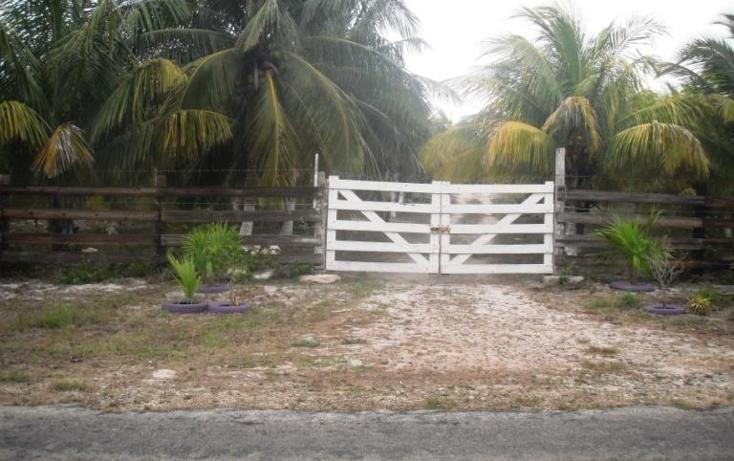 Foto de terreno habitacional en venta en  , dzilam de bravo, dzilam de bravo, yucatán, 1773640 No. 06
