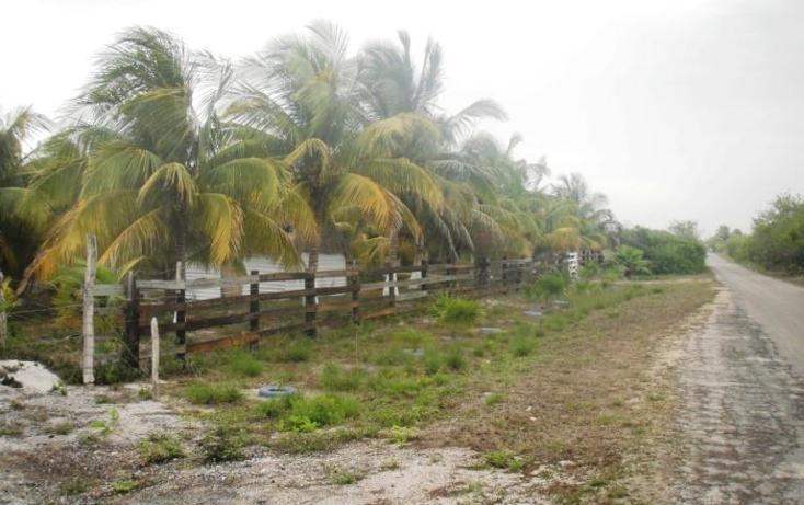 Foto de terreno habitacional en venta en  , dzilam de bravo, dzilam de bravo, yucatán, 1773640 No. 07