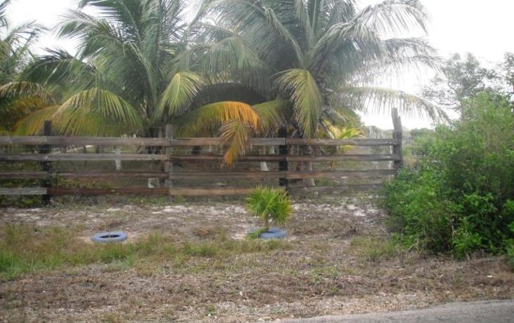 Foto de terreno habitacional en venta en  , dzilam de bravo, dzilam de bravo, yucatán, 1773640 No. 08