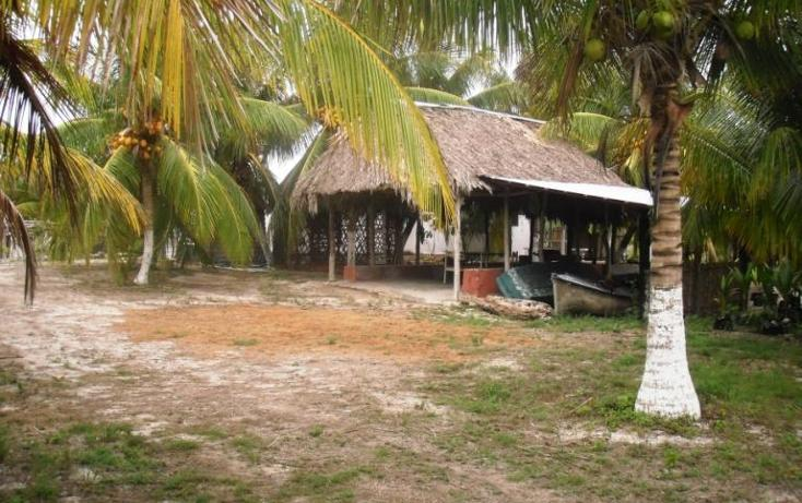 Foto de terreno habitacional en venta en  , dzilam de bravo, dzilam de bravo, yucatán, 1773640 No. 11