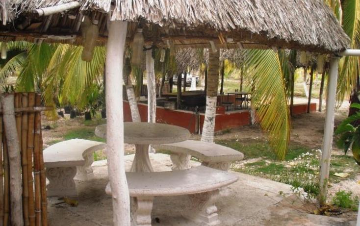 Foto de terreno habitacional en venta en  , dzilam de bravo, dzilam de bravo, yucatán, 1773640 No. 13