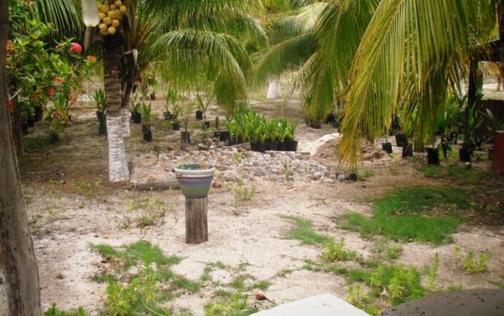 Foto de terreno habitacional en venta en  , dzilam de bravo, dzilam de bravo, yucatán, 1773640 No. 14