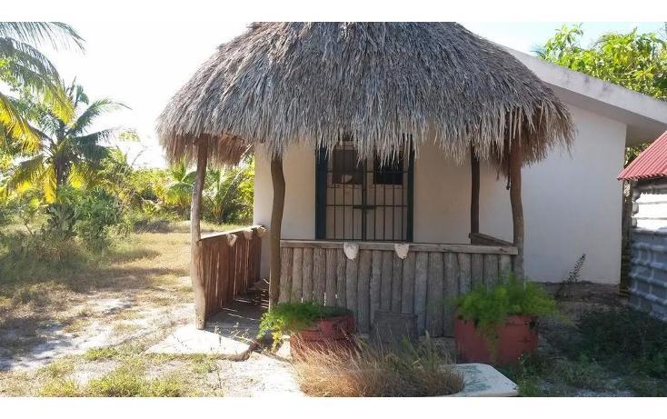 Foto de terreno habitacional en venta en  , dzilam de bravo, dzilam de bravo, yucatán, 1773640 No. 24