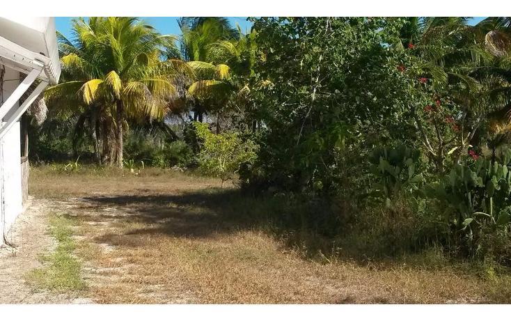 Foto de terreno habitacional en venta en  , dzilam de bravo, dzilam de bravo, yucatán, 1773640 No. 25