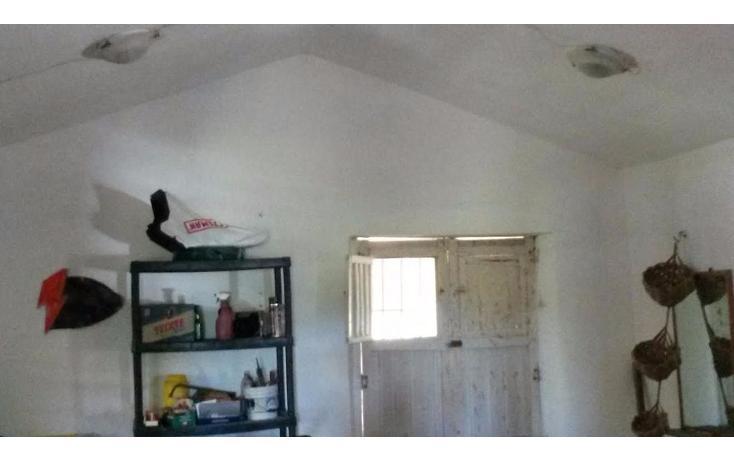 Foto de terreno habitacional en venta en  , dzilam de bravo, dzilam de bravo, yucatán, 1773640 No. 27