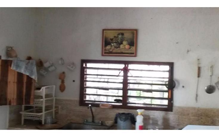 Foto de terreno habitacional en venta en  , dzilam de bravo, dzilam de bravo, yucatán, 1773640 No. 29