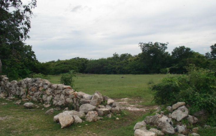 Foto de terreno habitacional en venta en, dzitya, mérida, yucatán, 1088519 no 01