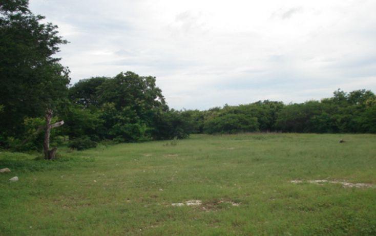 Foto de terreno habitacional en venta en, dzitya, mérida, yucatán, 1088519 no 02