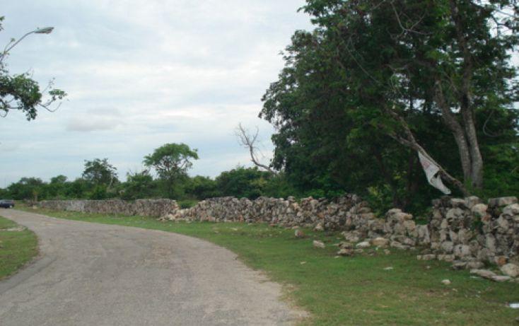 Foto de terreno habitacional en venta en, dzitya, mérida, yucatán, 1088519 no 03