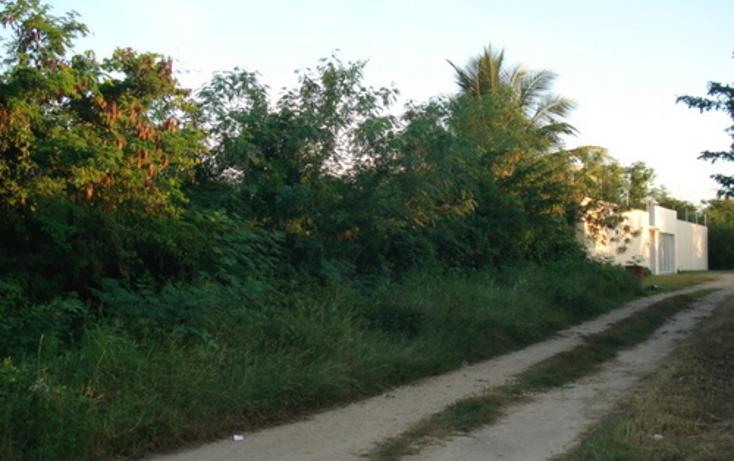 Foto de terreno habitacional en venta en  , dzitya, mérida, yucatán, 1162975 No. 01