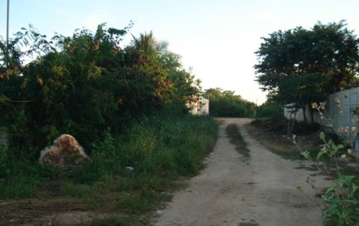 Foto de terreno habitacional en venta en  , dzitya, mérida, yucatán, 1162975 No. 02