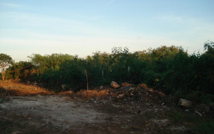 Foto de terreno habitacional en venta en  , dzitya, mérida, yucatán, 1162975 No. 03