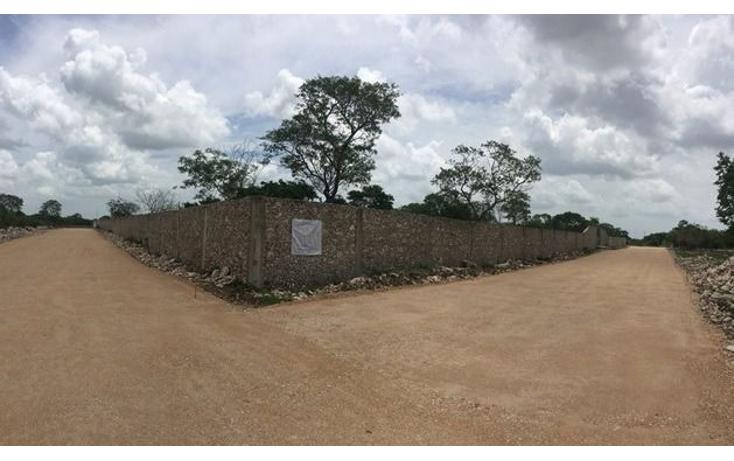 Foto de terreno habitacional en venta en  , dzitya, mérida, yucatán, 1179055 No. 01