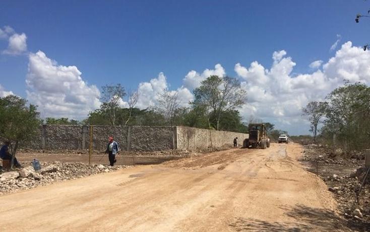 Foto de terreno habitacional en venta en  , dzitya, mérida, yucatán, 1179055 No. 02